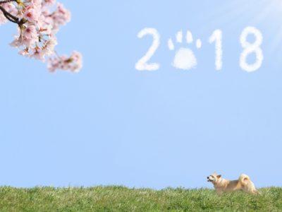 2018年風水~絶対願いを叶える開運アクション~