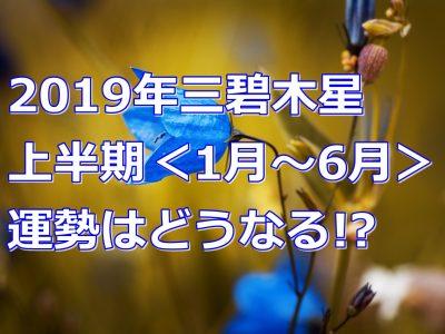 2019年の運勢を徹底解説!三碧木星の上半期の運気は!?